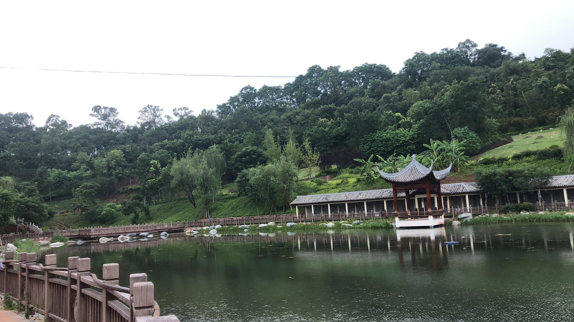 资阳凤岭公园景观5278论坛项目
